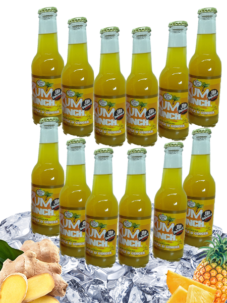 Double Strength Pineapple & Ginger Rum Punch - 12 pack - 200ml